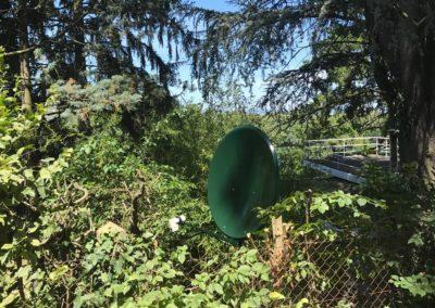 parabole satellite camouflée dans la verdure à Arnas 69400